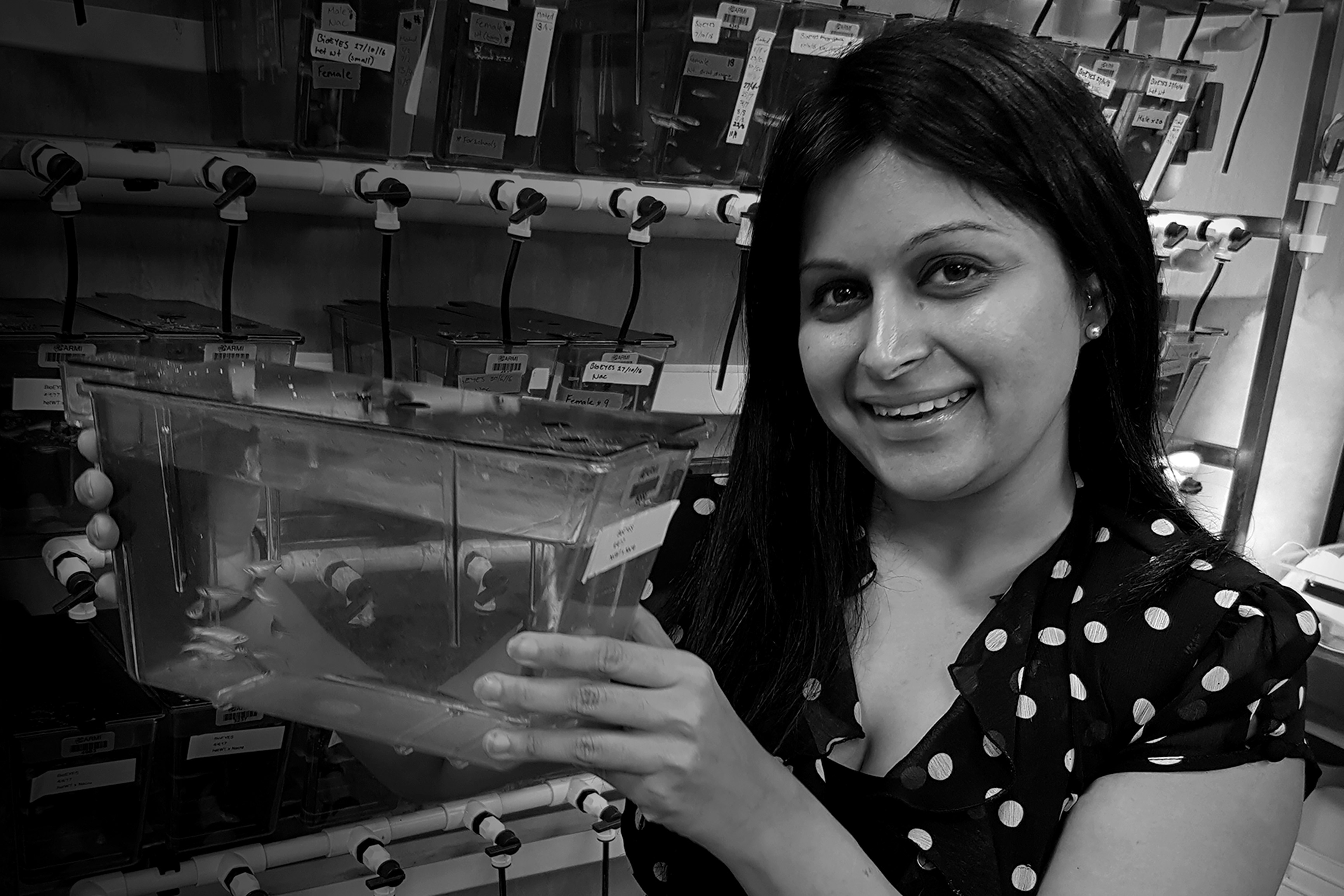 The young researcher using zebrafish to understand progressive muscle weakness
